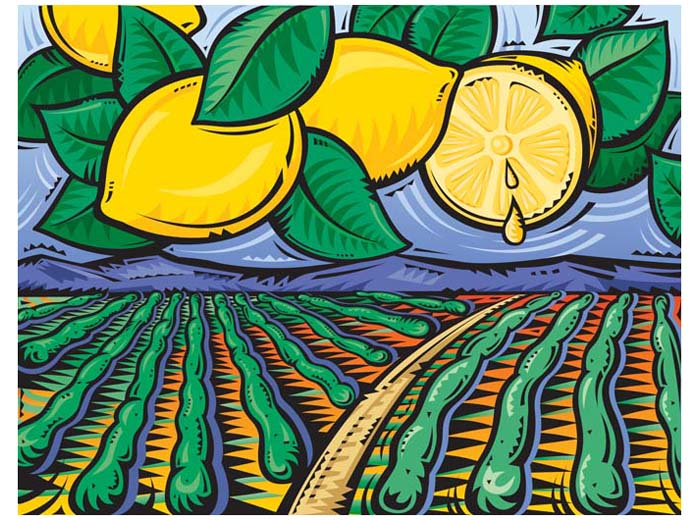 Lemon Field
